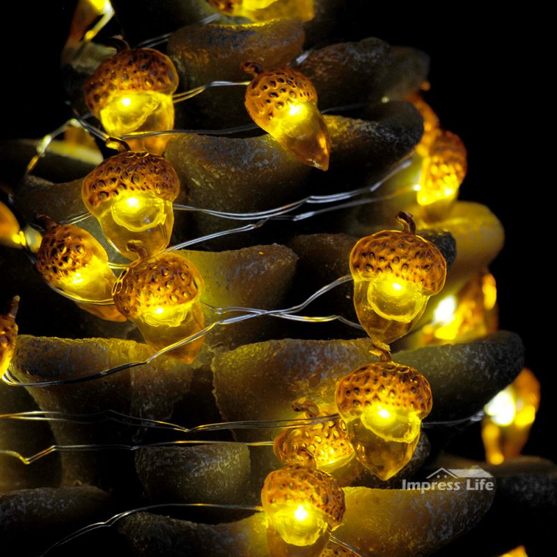 Acorn Rope Lights String 10 ft 40 LEDs with Remote for Covered ...